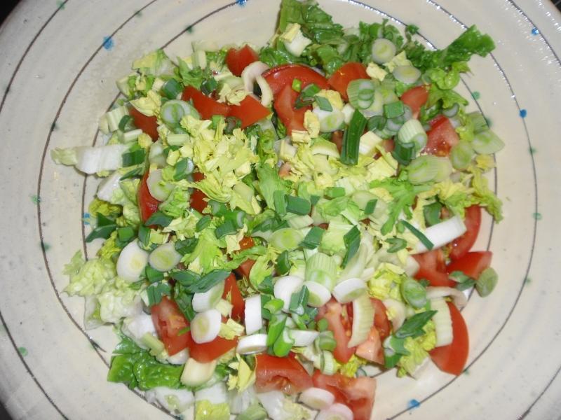 Salat mit Tomate, Sellerie und Frühlingszwiebeln